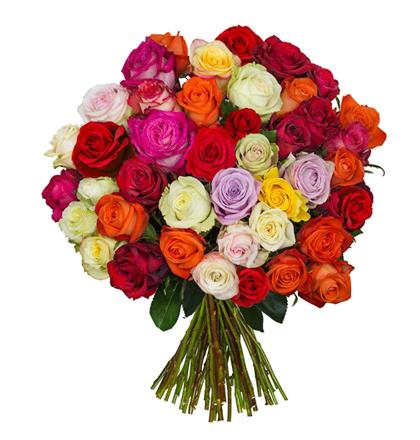 """Strauß aus 50 Rosen """"SweetRoses"""" für 25,45€ inkl. Versand"""