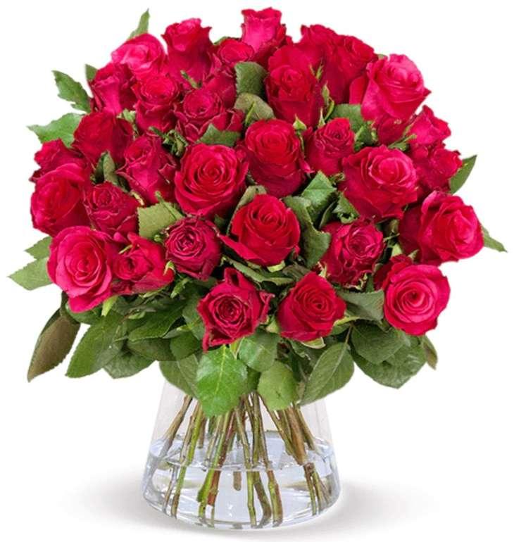 """41 rote Rosen im Strauß """"ClassicRed"""" für 25,98€ inkl. Versand (statt 44€)"""