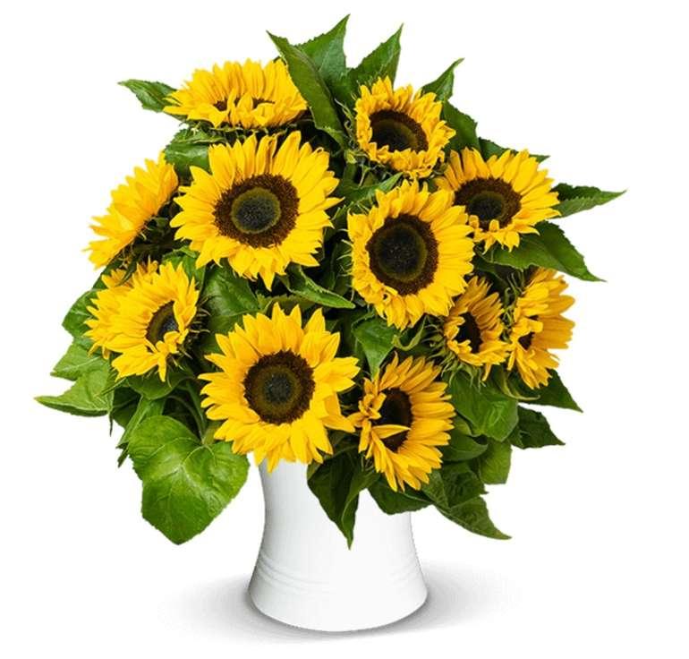 20 Sonnenblumen mit ca. 60cm Stiellänge für 22,98€ inkl. Versand