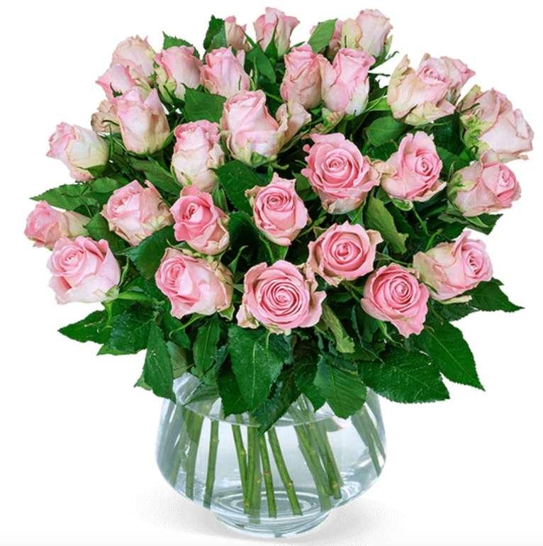40 roséfarbene Rosen im Strauß für 24,98€ inkl. Versand (statt 40€)
