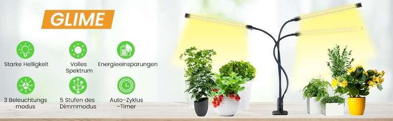 glime-lampe