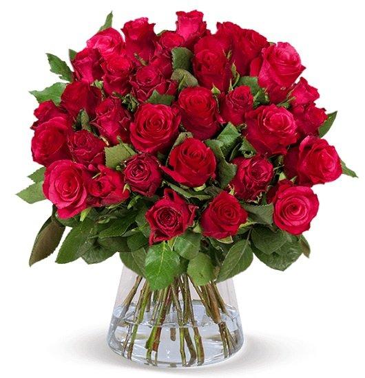 """44 rote Rosen im Strauß """"ClassicRed"""" für nur 29,98€ inkl. Versand"""