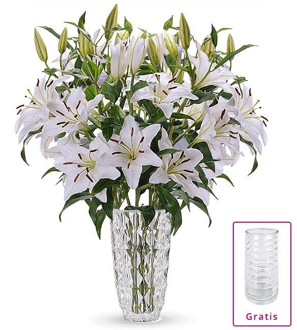 20 weiße Lilien mit XXL Blüten inkl. Vase für 23,98€ inkl. Versand