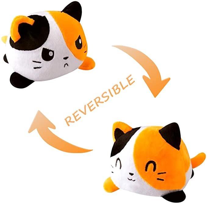 reversible-cat