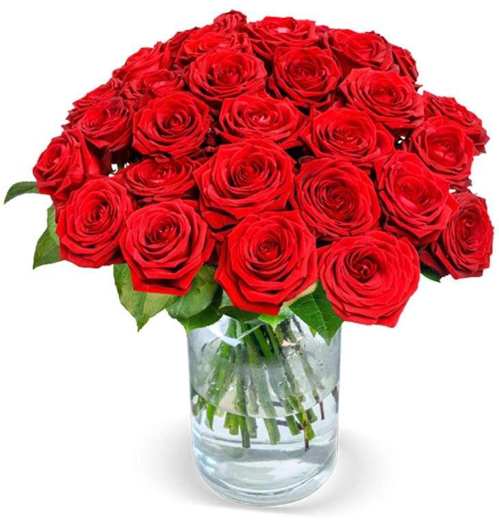 """24 rote """"Red Naomi"""" Rosen im Strauß für 25,98€ inkl. Versand (statt 45€)"""