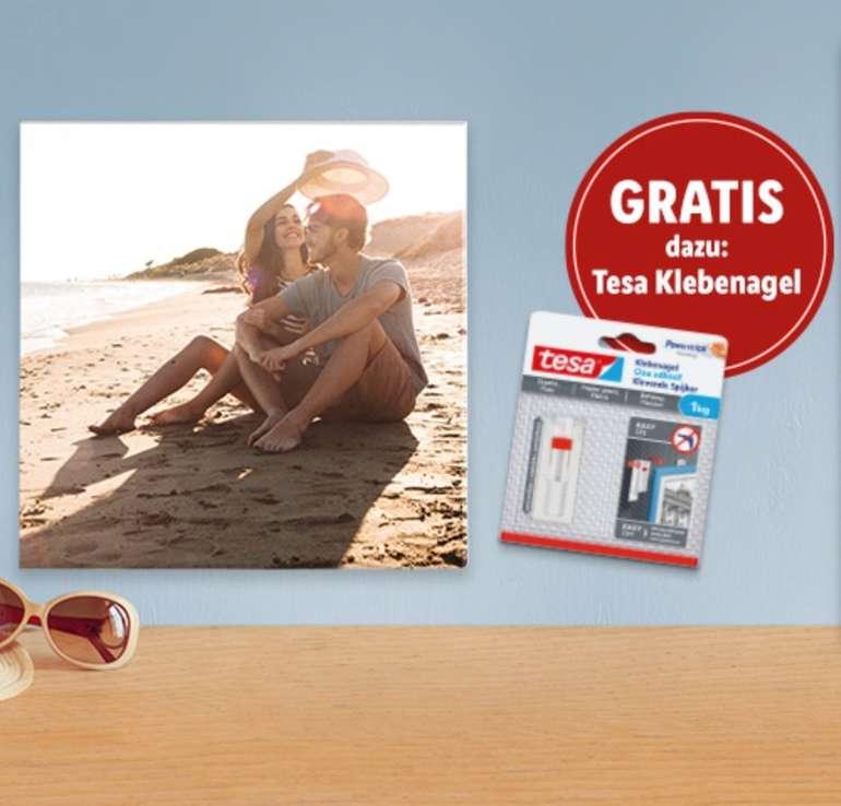 LIDL-Fotos: 20x20cm Foto Leinwand inkl. Tesa Klebenagel für 4,99€ (nur Neukunden!)