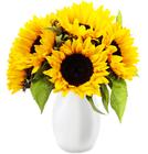 8 Sonnenblumen im Strauß für 13,87€ inkl. Versand