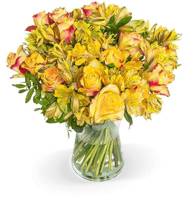 Rosenarrangement Herbstgold für 22,98€ inkl. Versand