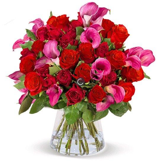 Rosenarrangement Tropical Love mit 20 roten Rosen + 10 pinken Calla für 24,98€ inkl. Versand