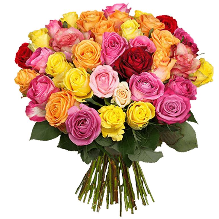 Rosen-Rausch: Strauß aus 31 Rosen für 18,89€ inkl. Versand