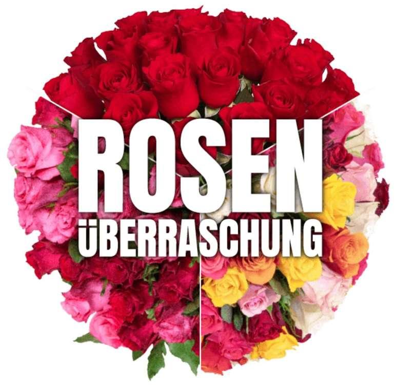 Blume Ideal Rosenüberraschung: Strauß mit 40 bunten Rosen für 24,98€ inkl. Versand