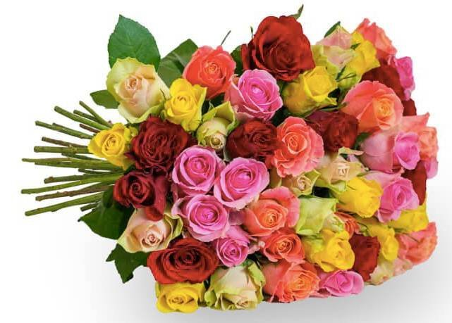"""Blumenstrauß """"HappyRoses"""" mit 50 bunten Rosen für 24,99€ inkl. Versand"""