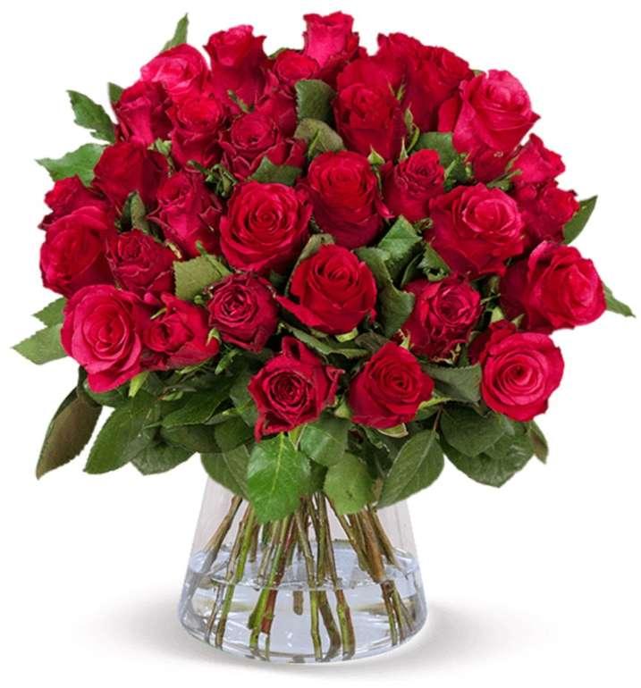 """35 rote Rosen im Strauß """"ClassicRed"""" für nur 27,98€ inkl. Versand"""