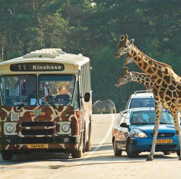 Safaripark Beekse Bergen in den Niederlanden: Tagesticket + 2 Nächte im Van der Valk Vught + Frühstück nur 260,60€ für 2 Personen