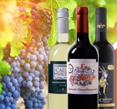 Weinvorteil: 50% Rabatt auf über 60 ausgewählte Weine + Versandkostenfrei ab 65€