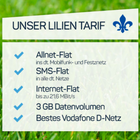 Otelo Lilien Tarif (3GB, Allnet-Flat, SMS Flat) + Honor 9 je 18,98€ mtl.