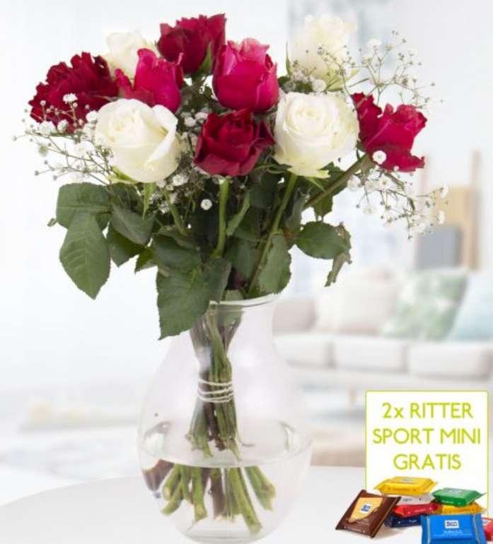 10 gemischte Rosen mit Schleierkraut (40 cm) + 2 gratis Mini Schokis für 19,90€ inkl. Versand