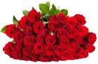 """44 rote Rosen im Strauß """"ClassicRed"""" für nur 22,58€ inkl. Versand"""