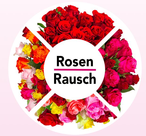 Blume Ideal Rosenrausch mit bis zu 33 Rosen für 19,98€ inkl. Versand