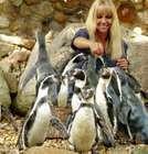 Groupon: Tagesticket für den Weltvogelpark Walsrode nur 17,50€ (statt 24€) – Kinder bis 3 Jahren kostenfrei!