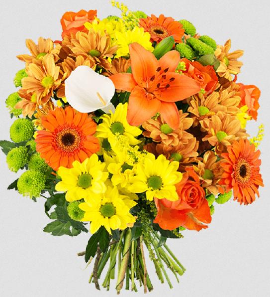 BlumeIdeal: 20% Rabatt auf verschiedene Blumen zu Ostern
