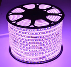 100 Meter LED Light mit 5730 3 farbig dimmenden Neon Lichtern für 19,25€