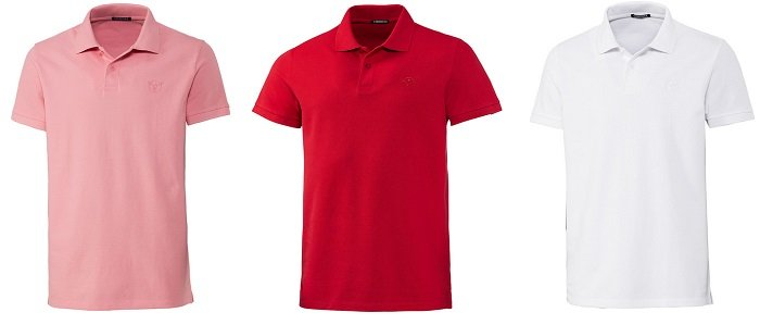 Chiemsee Herren Polo-Shirts in 6 Farben