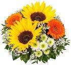 Lidl Blumen: 5€ Gutschein ohne Mindestbestellwert - 10 Sonnenblumen 17,99€