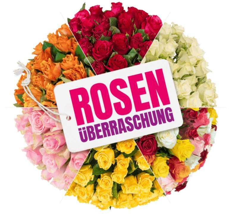 35 Rosen in Überraschungsfarbe (50cm Länge) für 25,98€ inkl. Versand (statt 46€)