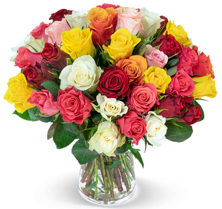 """35 bunte Rosen """"Crazy in Love"""" für 25,98€ inkl. Versand (statt 40€)"""