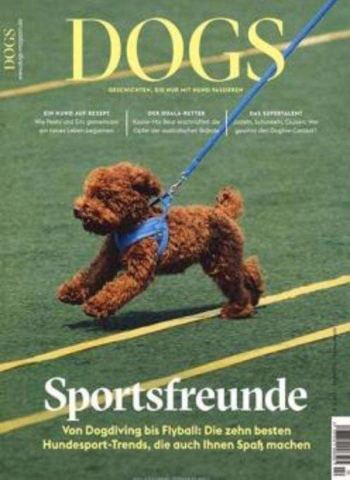 """Zeitschrift """"Dogs"""" im Jahresabo für 39€ + z.B. 25€ Gutschein für Amazon"""