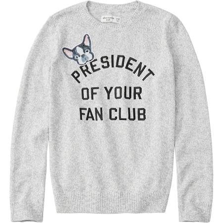 Abercrombie & Fitch Pullover für Kids (Größe: 110 - 140) je 14,37€ inkl. Versand (statt 27€)
