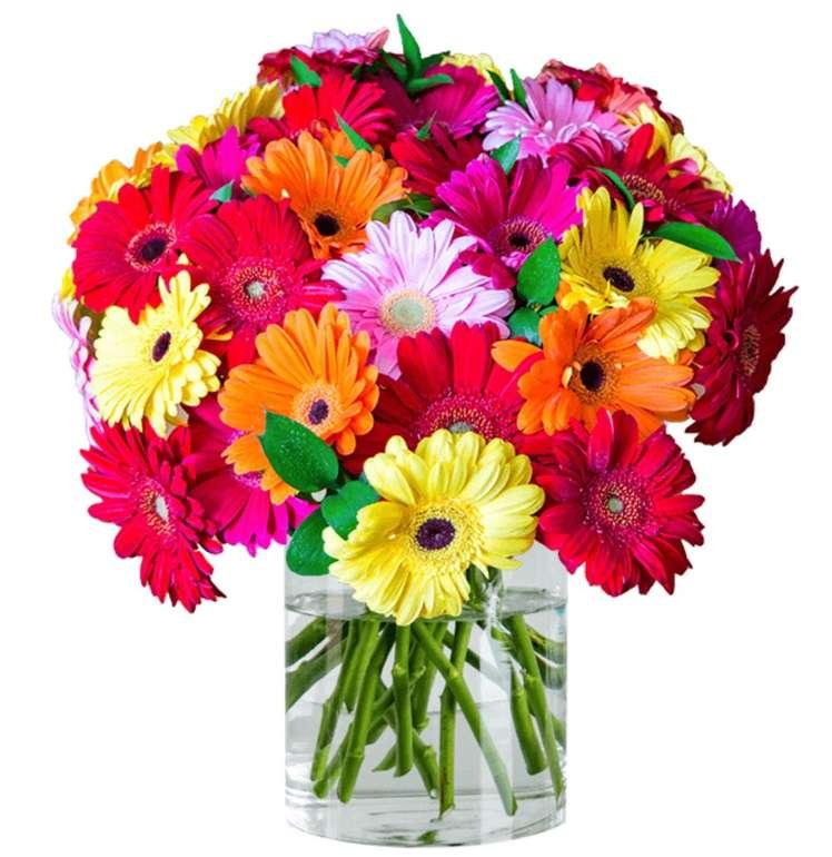 Blumenstrauß mit 31 bunten Shiny Gerbera für 20,98€ inkl. Versand