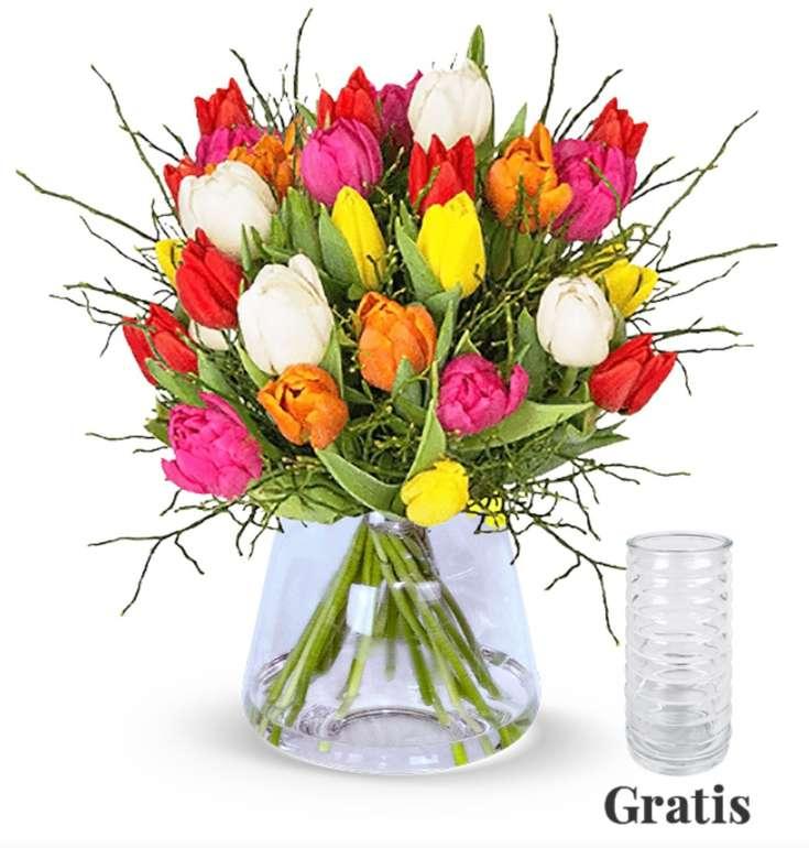 """Tulpenstrauß """"Modern Love"""" - 20 Tulpen aufgebunden mit Heidelbereen + Vase für 25,98€"""