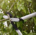 Fiskars PowerGearX Amboss-Getriebeastschere 80cm ab 49,49€ (statt 54€)