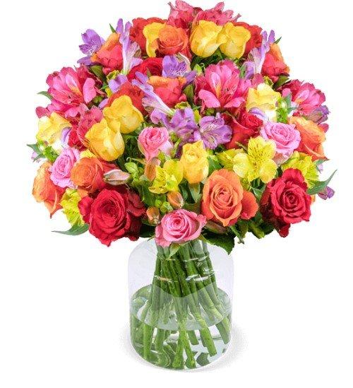 31 Rosenglück XXL mit bis zu 120 Blüten für 25,98€ inkl. Versand