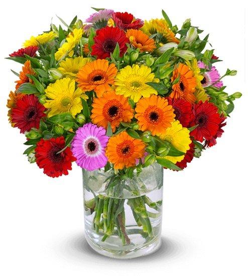 """Blumenstrauß """"Blütengruß"""" mit Gerbera & Inkalilien für nur 22,98€ (statt 33€)"""