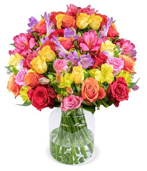 """Blumenstrauß """"Rosenglück XXL"""" mit bis zu 200 Blüten für 24,98€ inkl. Versand"""