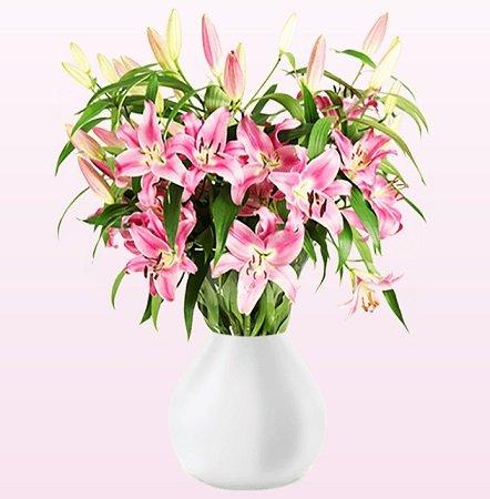 20 Lilien mit etwa 100 Blüten im Strauß für 19,98€ inkl. Versand