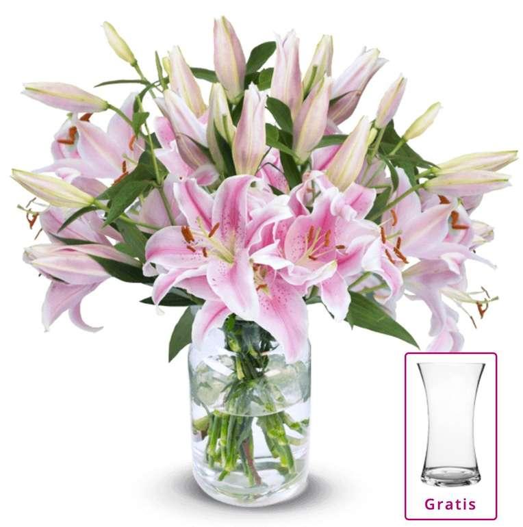 20 pinke Lilien (mit über 80 Blüten) + Vase für 24,98€ inkl. Versand