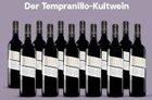 12 Flaschen Ricardo Sánchez 2016 Wein für 59,90€ inkl. Versand