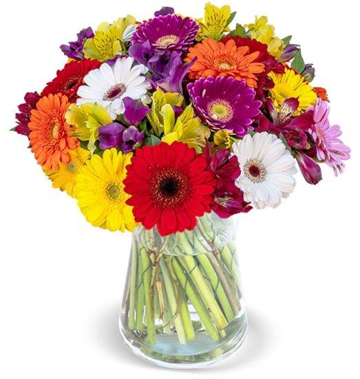 33 bunte Gerbera & Alstroemeria Blumen im Strauß Thinking of You für 27,98€ inkl. Versand