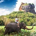 15 Tage Sri Lanka Rundreise mit Badeurlaub im top Hotel ab 1.489€ p.P.