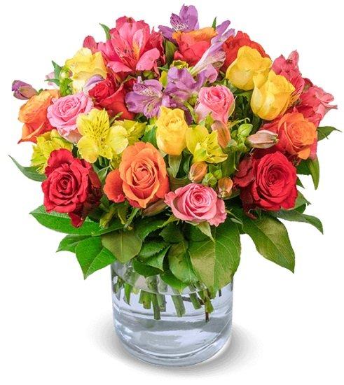 Rosenstrauß 'Blütenkuss' mit 30 Stielen für nur 22,98€ inkl. Versand